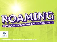 Viva - Roaming